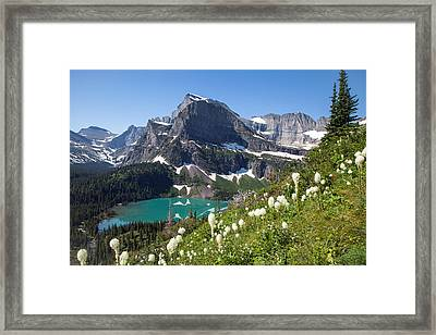 Grinnell Lake With Beargrass Framed Print by Jack Bell