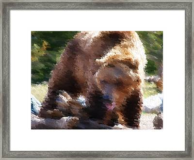 Grizz Framed Print by Kevin Bone