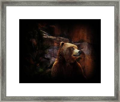 Grizzle Bear Framed Print by Michelle Frizzell-Thompson