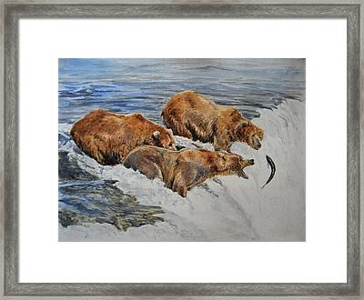 Grizzlies Fishing Framed Print by Juan  Bosco