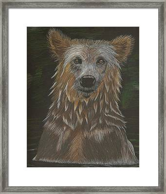 Grizzly Bath Framed Print