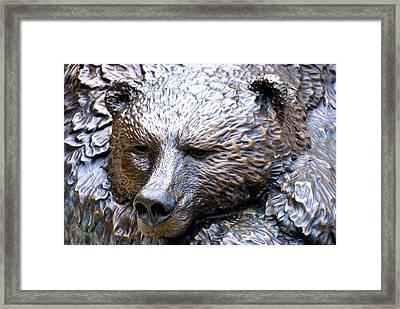 Grizzly Bear 2 Framed Print