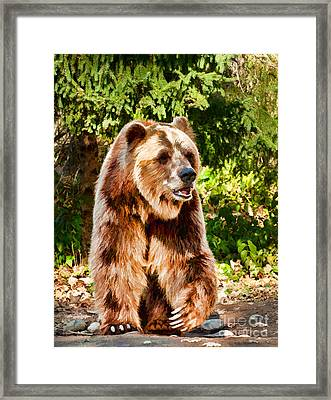 Grizzly Bear - Painterly Framed Print