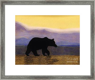 Grizzly By The Water Framed Print by D Hackett
