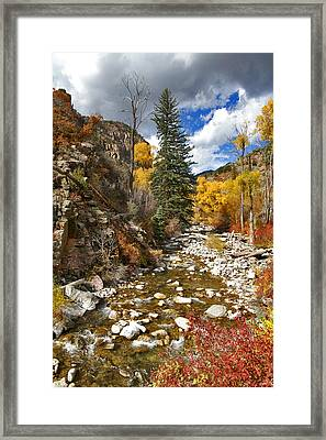 Framed Print featuring the photograph Grizzly Creek Cottonwoods Vertical by Jeremy Rhoades