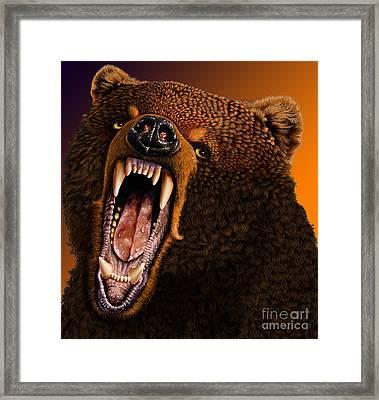 Grizzly Framed Print by Jurek Zamoyski