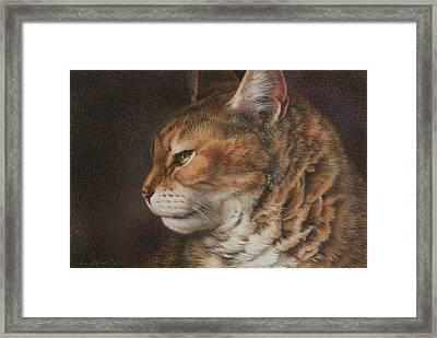 Grizzly Framed Print by Lynn Bywaters