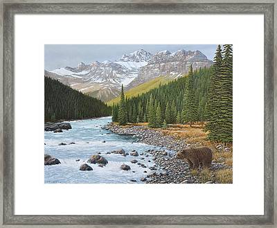 Grizzly Rapids Framed Print