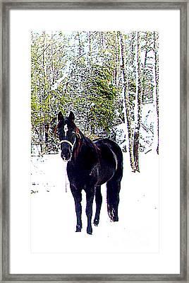 Grnady Framed Print