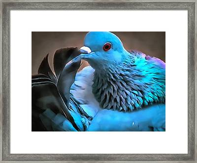 Grooming For Her Framed Print