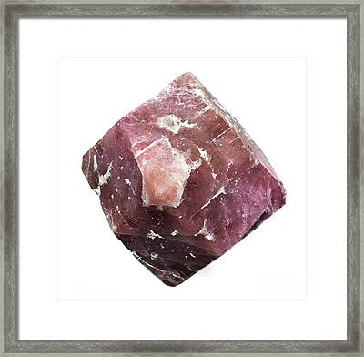 Grossular Dodecahedral Crystal Framed Print by Dirk Wiersma