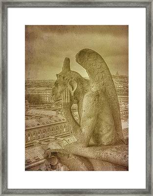 Grotesque From Notre Dame Framed Print
