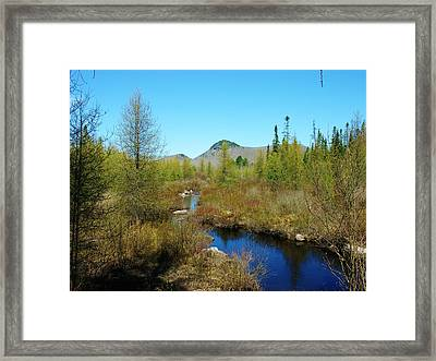 Framed Print featuring the photograph Groton State Forest Moose Country by Sherman Perry