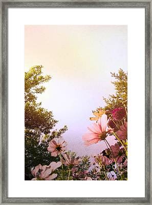 Ground View Framed Print by Margie Hurwich