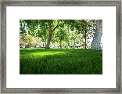 Ground View Framed Print