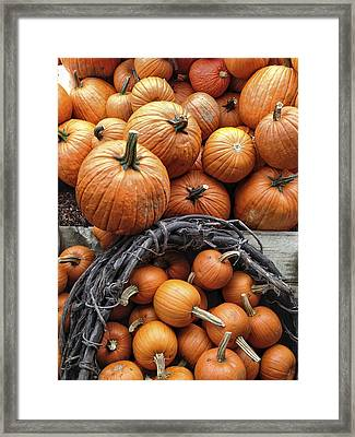 Group Of Farm Fresh Delicious Pumpkins Framed Print by Andy Gimino