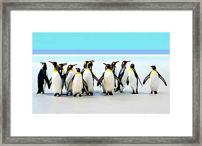 Group Of Penguins Framed Print by Helen Stapleton