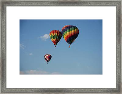 Grouped Up Framed Print by Miguelito B
