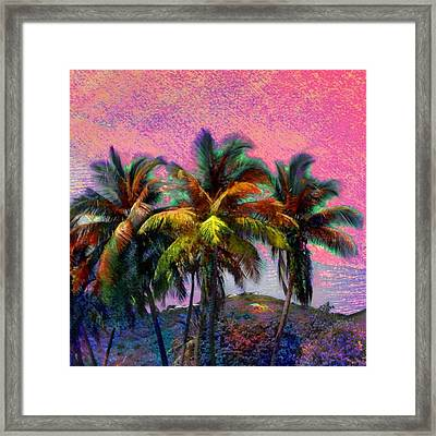 Grove Of Coconut Trees - Square Framed Print