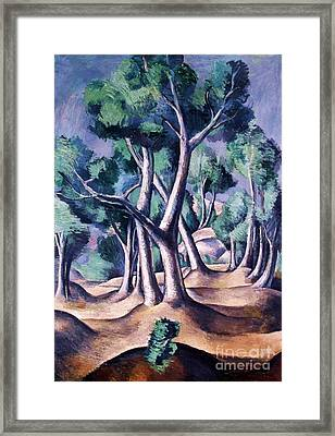 Grove Framed Print by Pg Reproductions