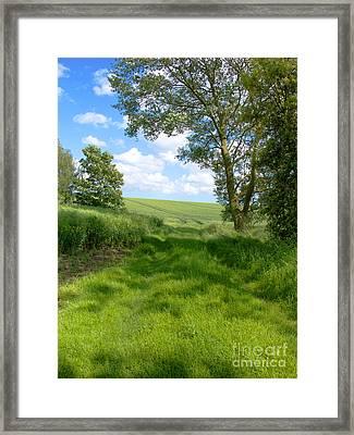 Growing Green Framed Print by Ann Horn