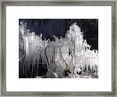Growing Icicles In Florida Framed Print