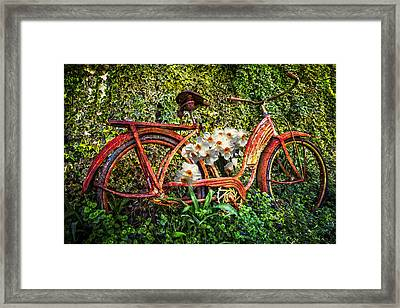 Growing In The Garden Framed Print by Debra and Dave Vanderlaan