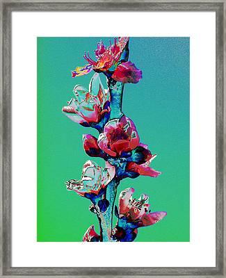 Growing Skyward Framed Print