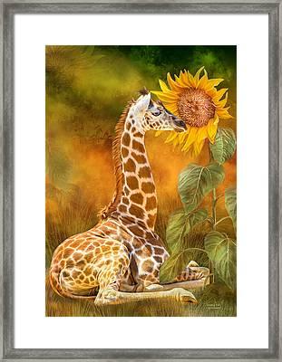 Growing Tall - Giraffe Framed Print by Carol Cavalaris