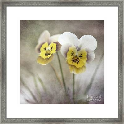 Growing Wild Framed Print by Priska Wettstein