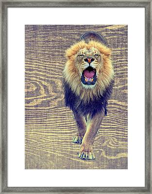Growling Wood Grain Framed Print by Bill Tiepelman