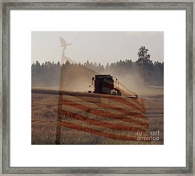 Grown In America Framed Print