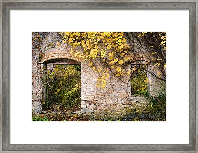 Framed Print featuring the photograph Growth Industry by Mark David Zahn Photography
