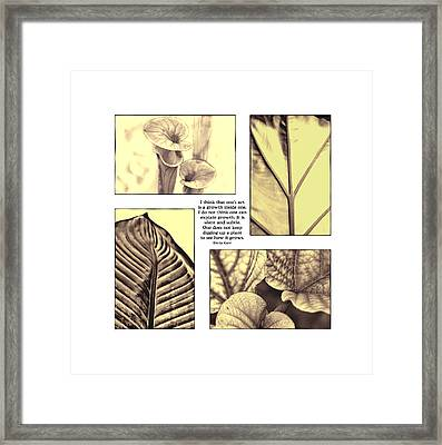 Framed Print featuring the photograph Growth by John Hansen