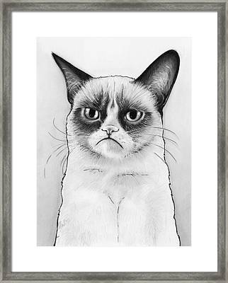 Grumpy Cat Portrait Framed Print by Olga Shvartsur