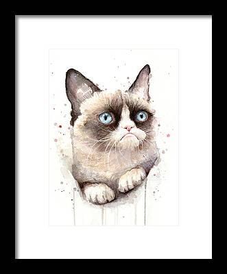 Kitty Cat Framed Prints