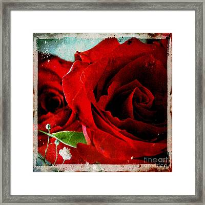 Grunge And Roses Framed Print by Sharon Kalstek-Coty