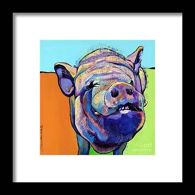 Pig Framed Prints