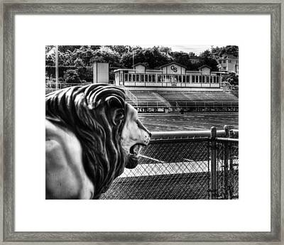 Gshs Lion Framed Print by Coby Cooper