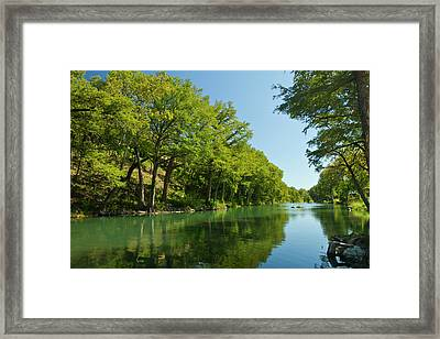Guadalupe River And Bald Cypress Trees Framed Print by Larry Ditto