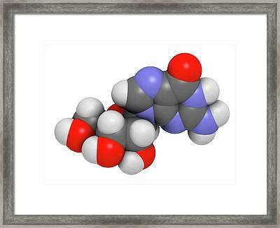 Guanosine Purine Nucleoside Molecule Framed Print by Molekuul