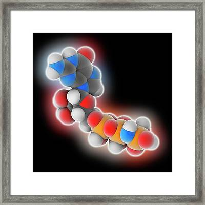 Guanylyl Imidodiphosphate Molecule Framed Print by Laguna Design