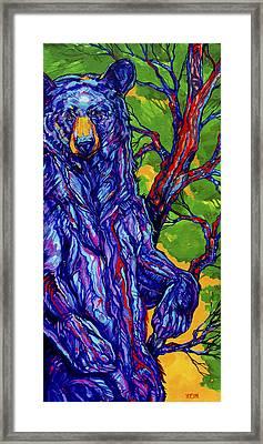 Guardian Bear Framed Print by Derrick Higgins