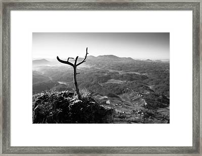 Guardian Framed Print by Davorin Mance