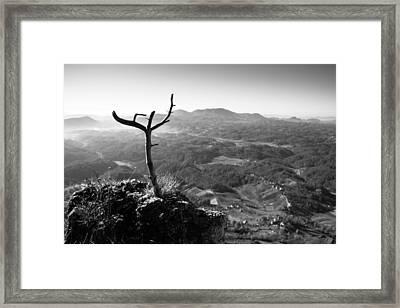 Guardian Framed Print by Davorin Mance