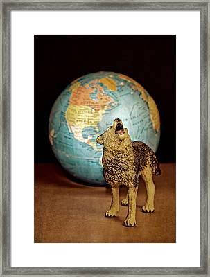 Guardian Framed Print by Jeff  Gettis