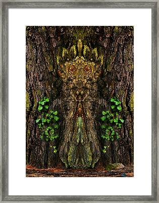 Guardian Of The Wild Woods Framed Print
