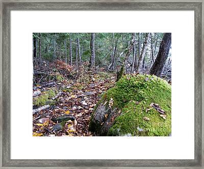Guardian Rock Framed Print by Leone Lund