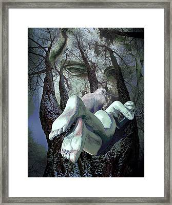 Guardians Of Dreams Framed Print