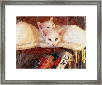 Guardians Of The Library Framed Print by Jane Schnetlage